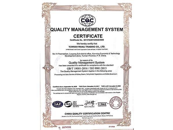万力贸易英文质量管理体系认证证书