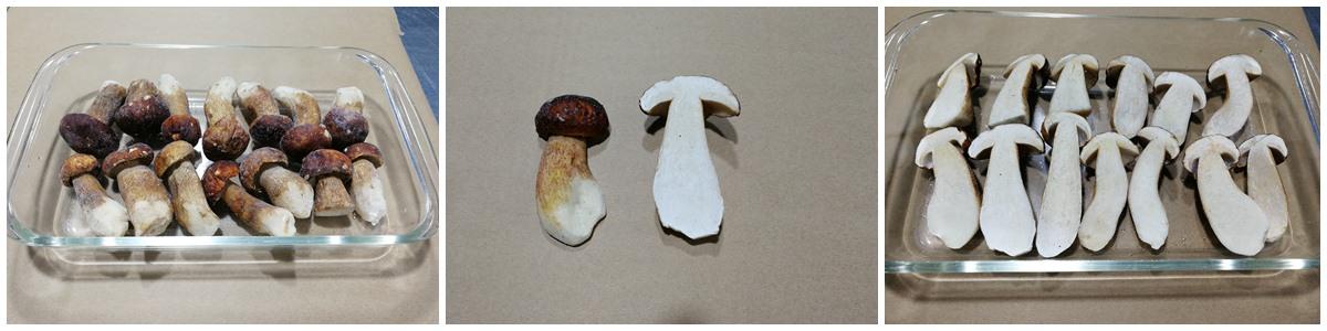 牛肝菌产品鉴赏