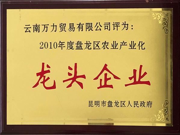 万力贸易荣获2010年度盘龙区农业产业化龙头企业