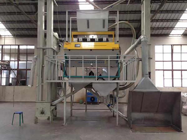 万力贸易芸豆工厂